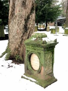 Im Schnee 2013